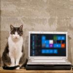 Windows10アップデート後のパソコン点検(2017.06)